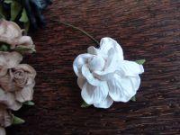 Къдрава роза, бяла, 45мм